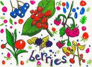 berriesreal