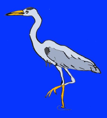 vogel_blauwe reiger_blauw