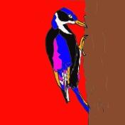vogel_bontespecht rood