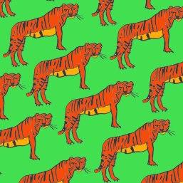 pattern8-365
