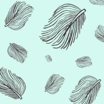 Quiet Feather